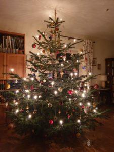 Hausandachten - Weihnachtsbaum