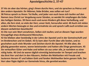 Bibelkurs-Apostelgeschichte 2