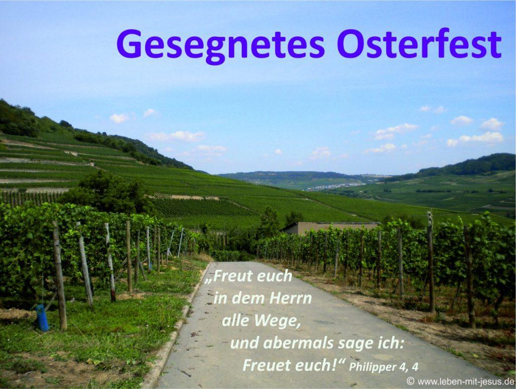 e-cards Ostern-Weg im Weinberg
