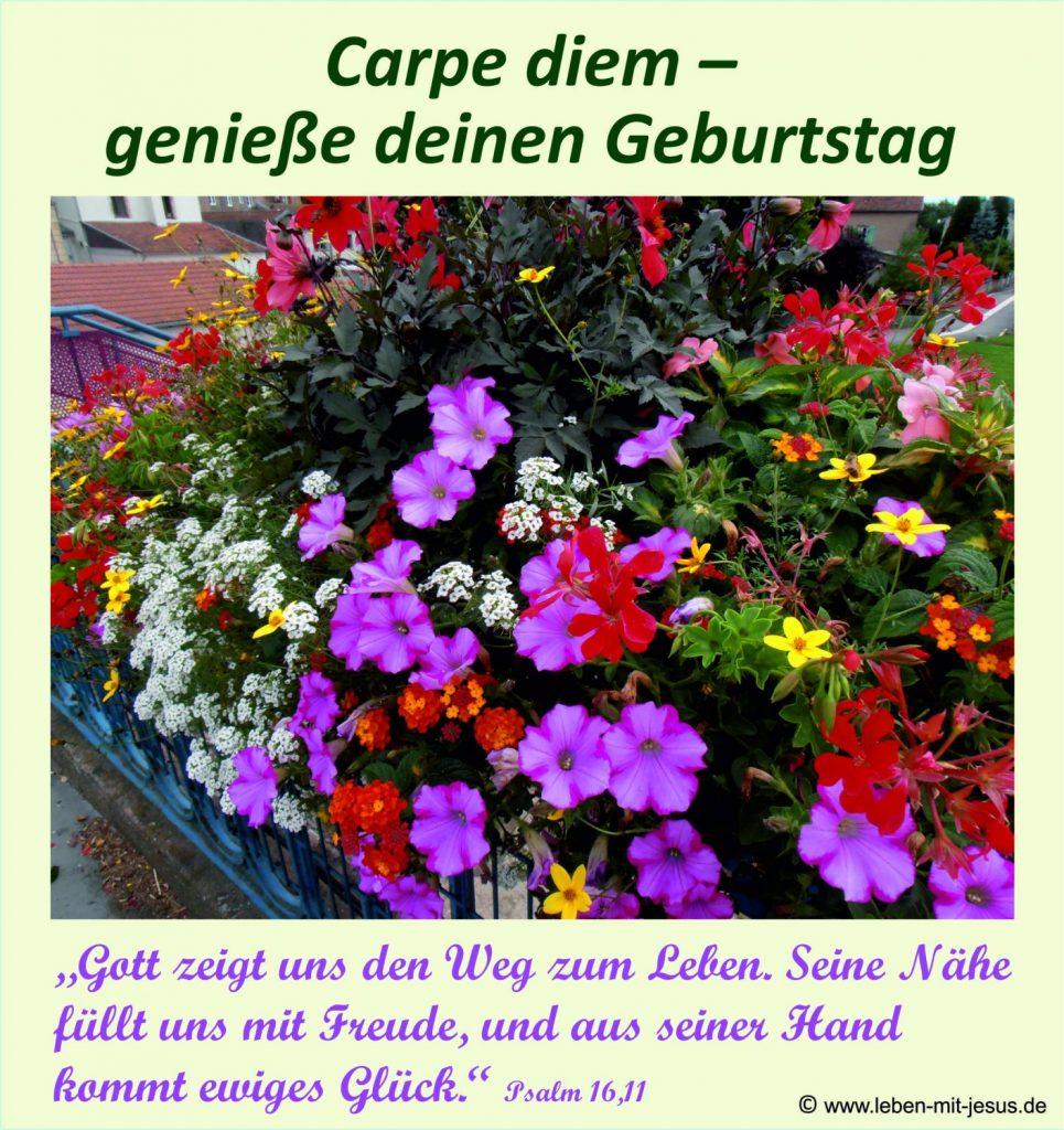 e-cards Geburtstag-Blumenmeer